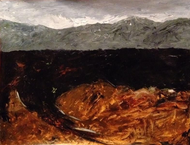' Bogland'  Co. Laois, 61 cm wide x 49 cm high, oil on Fabriano