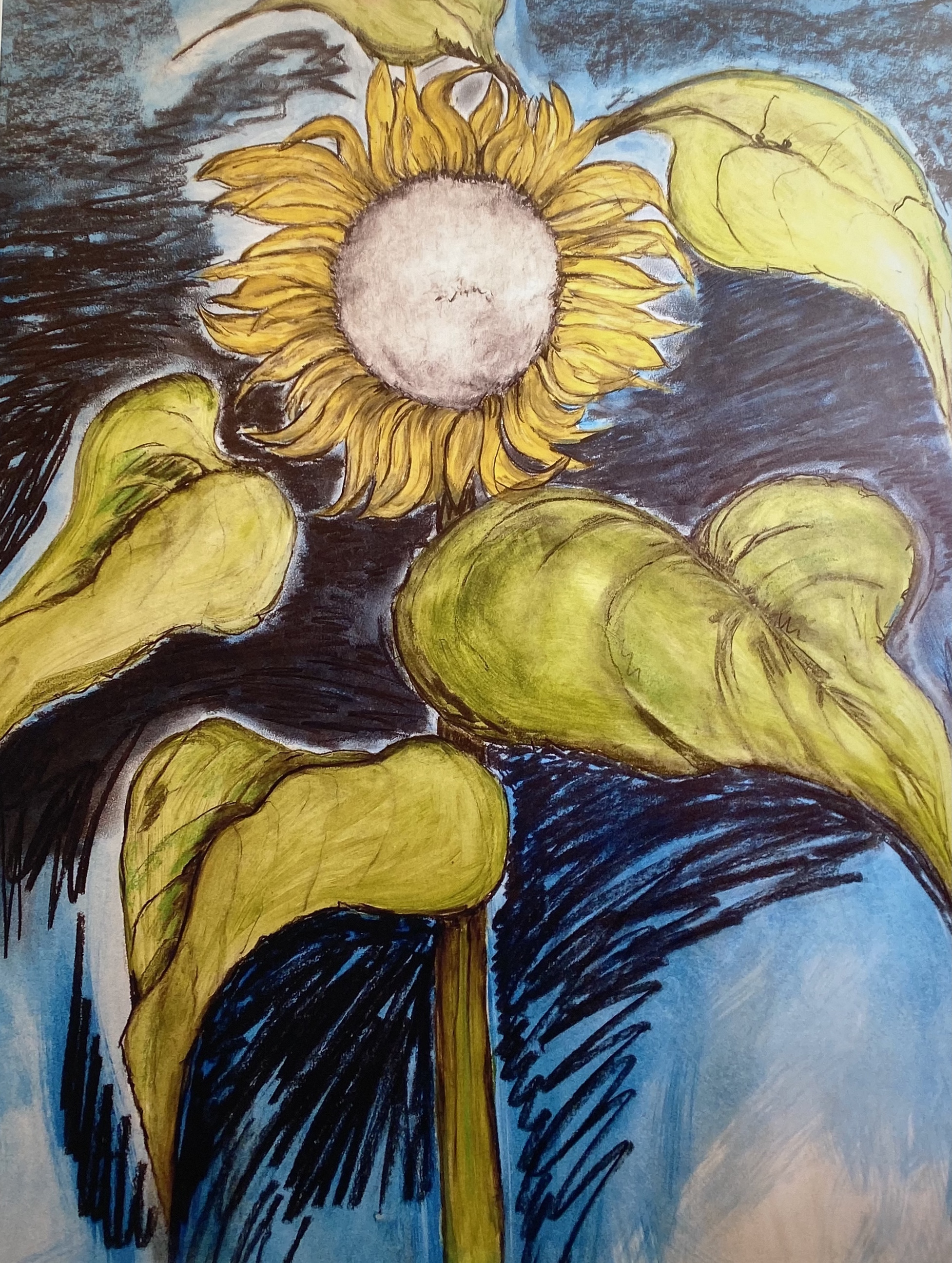 ' Sunflower '. mixed media on Fabriano, 116 cm h x 91 cm w